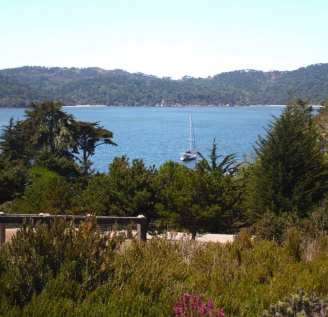 Bay-views-Spring-Coyote-Ranch-Sylvia-Linsteadt-1