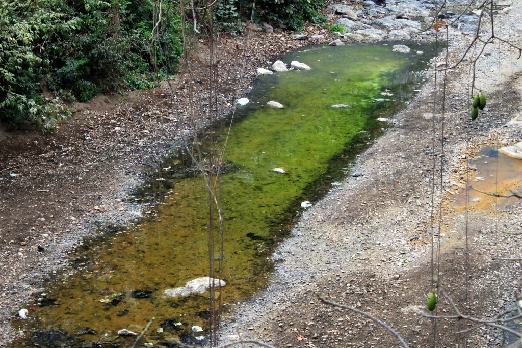 (Acid Drainage from Abandoned mine in San Sebastian River, Credit: Aruna Dutt