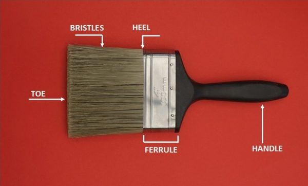 parts of a paint brush